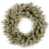 National Tree Co. Snowy Concolor Fir Pre-Lit Wreath with 100 Clear Lights