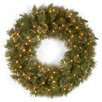 National Tree Co. Wispy Willow Pre-Lit Wreath