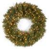 National Tree Co. Wispy Willow Pre-Lit Wreath