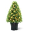 National Tree Co. Pre-Lit Boxwood Round Tapered Topiary in Pot