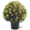 National Tree Co. Pre-Lit Cedar Round Topiary in Pot