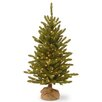 National Tree Co. 4' Green Artificial Christmas Tree with 150 Incandescent Colored and Clear Lights with Stand