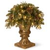 National Tree Co. Pine Porch Bush with 35 Clear Lights