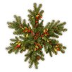 National Tree Co. Snowflake with 35 Battery Operated LED Lights