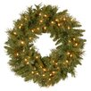 "National Tree Co. Tiffany 24"" Fir Wreath with 50 Clear Lights"