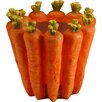 Carrot Flower Plastic Pot Planter - National Tree Co. Planters