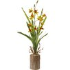 National Tree Co. Potted Flower