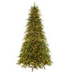 National Tree Co. 9' Northern Frasier Trees Artificial Christmas Tree with 900 Clear Colored and White Lights with Stand
