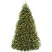 National Tree Co. 9' Dunhill Fir Hinged Green Artificial Christmas Tree with 900 Clear Lights