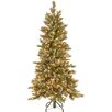 National Tree Co. 5' Glittering Pine Trees Artificial Christmas Tree with 350 LED Colored and White Lights with Stand