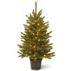 National Tree Co. Kensington 4' Green Artificial Christmas Tree with 100 Clear Lights