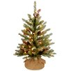 National Tree Co. Dunhill 2' Green Fir Artificial Christmas Tree with 15 LED Warm White