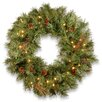 "National Tree Co. Glistening 24"" Lighted Pine Wreath"
