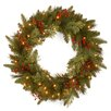 "National Tree Co. 24"" Lighted Wreath"