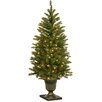 National Tree Co. Dunhill 4' Green Fir Artificial Christmas Tree with 70 Clear Lights