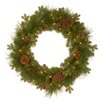"National Tree Co. Eastwood 24"" Lighted Spruce Wreath"