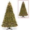 National Tree Co. Bayberry 16' Green Spruce Artificial Christmas Tree with 2500 LED Multicolor