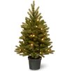 National Tree Co. Jersey Fraser 3' Green Fir Artificial Christmas Tree with 35 Warm White LED Lights