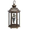 SPI Home Fairy 1 Light Outdoor Hanging Lantern