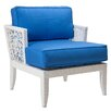 David Francis Furniture Mykonos Lounge Chair with Cushion