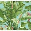 "York Wallcoverings Ashford Tropics 27' x 27"" Scenic Banana Leaf Wallpaper"