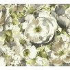 """York Wallcoverings Watercolors Poppy 27' x 27"""" Floral and Botanical Wallpaper"""