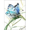Americanflat Butterfly 3 by Suren Nersisyan Painting Print