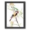 Americanflat Goldfinch Male by Suren Nersisyan Framed Painting Print