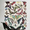 Americanflat Papillons Vintage Art Print Shower Curtain