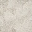 """MS International 3"""" x 6"""" Marble Tile in Tundra Gray"""