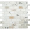 """MS International Calacatta Gold Mounted 1"""" x 2"""" Marble Subway Tile in White"""