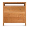 Dominion 3 Drawer Chest with Media Organizer Overhanging Top