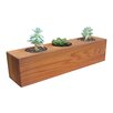 Succulent Cedar Pot Planter - Gronomics Planters