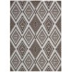 Nourison Enhance Brown/Grey Area Rug