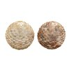 Woodland Imports Simply Beautiful Ceramic Shell Ball Sculpture (Set of 2)