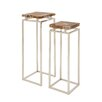 Woodland Imports 2 Piece Nesting Table Set