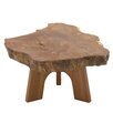 Woodland Imports Nature Themed End Table