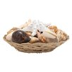 Woodland Imports Sea Shell Bowl