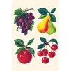 Buyenlarge 'Four Fruits' Graphic Art