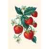 Buyenlarge 'Five Strawberries and Flowers' Painting Print