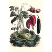 Buyenlarge 'Vegetables; Eggplant, Cabbage, Peppers, Onions' by Philippe-Victoire Levêque de Vilmorin Graphic Art