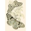 Buyenlarge 'European Butterflies and Moths' by James Duncan Painting Print