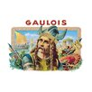 Buyenlarge Gaulois Cigars Vintage Advertisement
