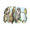 Buyenlarge A Hoot of Owls by Theodore Jasper Painting Print
