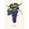 Buyenlarge Eumelan Grapes Painting Print