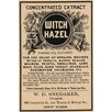 Buyenlarge 'Witch Hazel' Textual Art