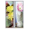 Buyenlarge Flower, Cactus, and Flower Graphic Art