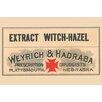 Buyenlarge 'Extract Witch - Hazel' Textual Art