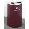 Glaro, Inc. RecyclePro Value Series 14-Gal Dual Stream Multi Compartment Recycling Bin