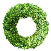 Mills Floral Boxwood Country Manor Wreath